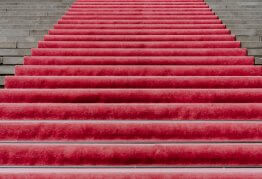 a luxurious red carpet covers a regal staircase