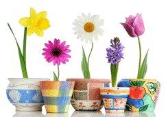 Seasoned Shoppers: understanding seasonality in retail marketing
