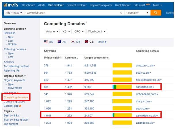 competing domains - Brighton SEO