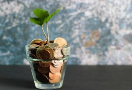 a glass full of coins with a plant growing out of it