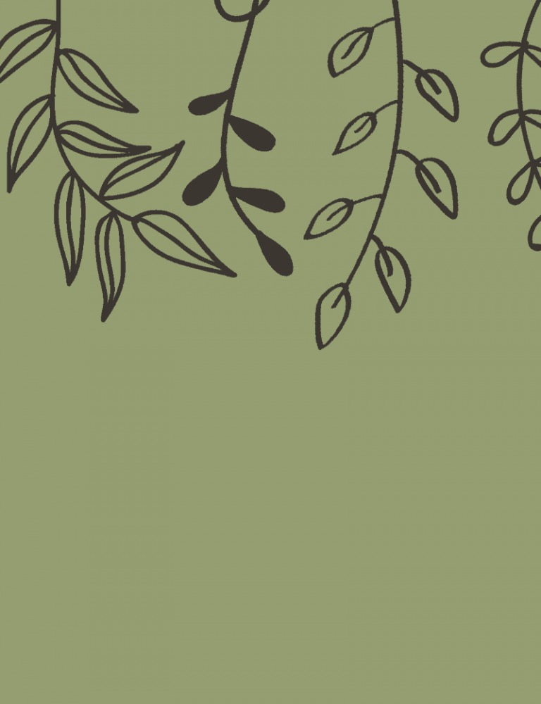 a green background with doodles of different types of leaves across the top